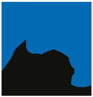BP3 Prosjekt